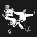Wu shu kwan classes