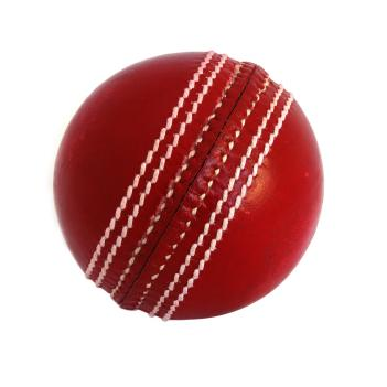 A Cricket Ball